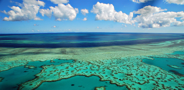 Great Barrier Reef above